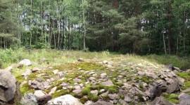 Wermsdorfer Wald, hügelgrabartiges Steinmal der Jungbronzezeit am Doktorteich, Foto: Susanne Baudisch 2012